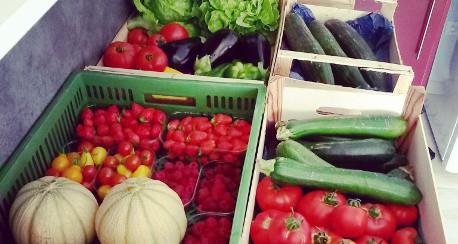 Mangez des légumes et fruits de saison !